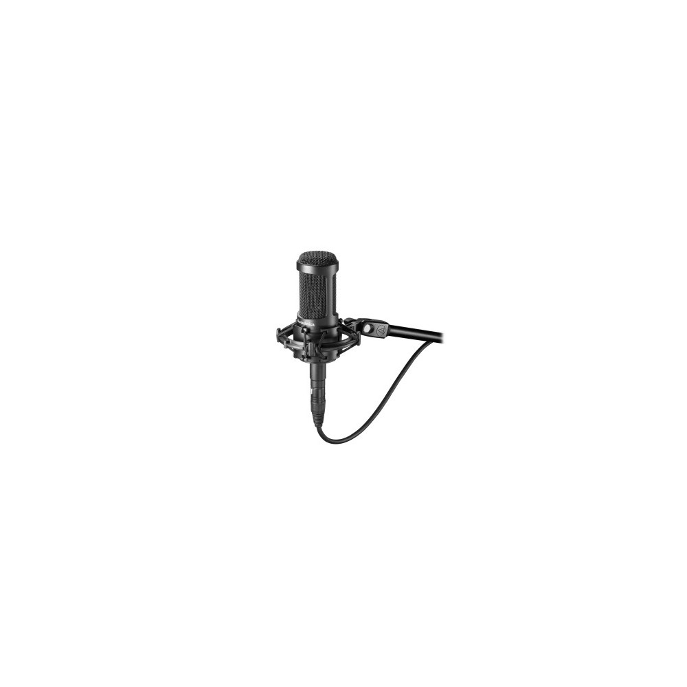 Audio Technica AT2050 Microfono Condenser Multipatron de Estudio